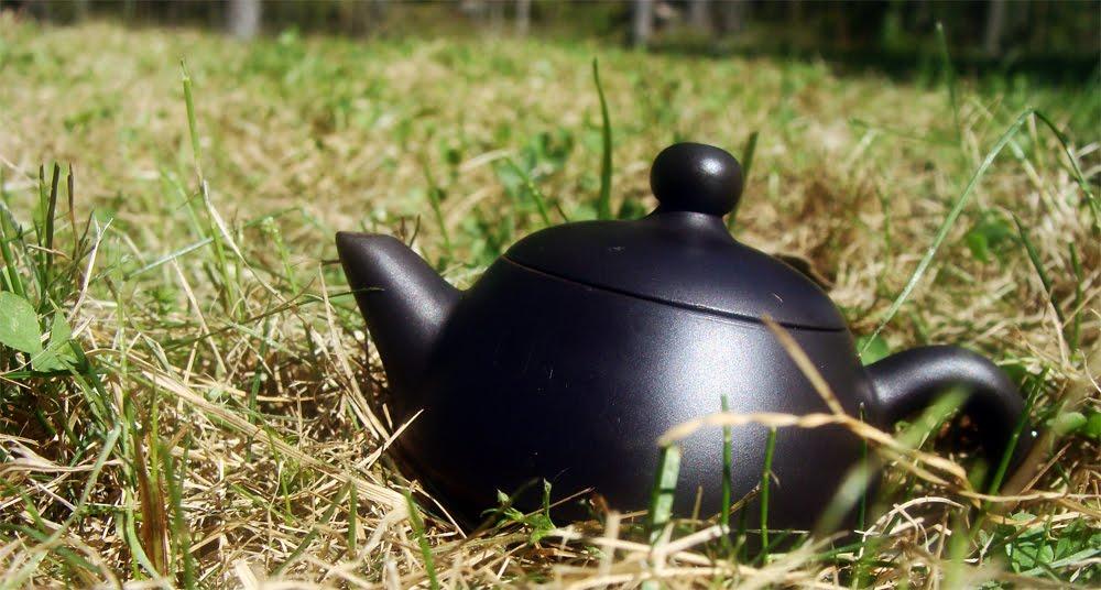 teevälineet, teekannu, tee kannu, tee kuppi, tee malja, vedenkeitin, tetsubin, teetietoa, haudutus, vihreä tee terveys, valkoinen tee, tee kauppa