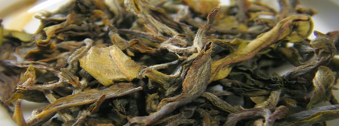 Valkoinen tee sisältää runsaasti terveellisiä ainesosia.